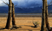 #CapeWaterGate : Western Cape drought impact: Hard, long-term, and requiring tough intervention
