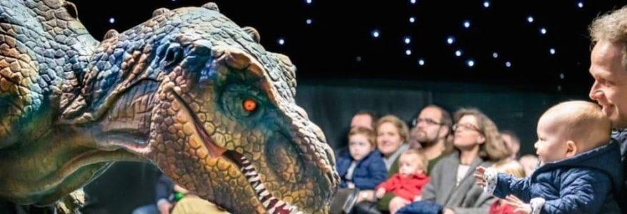 Sandton Dinosaur Exhibition Rivonia